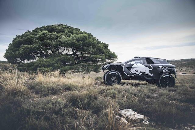 Peugeot-Dakar2